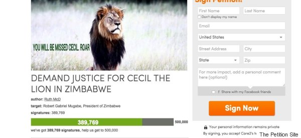 Justice For Cecil The Lion Petition Gains Close To Half A Million Signatures