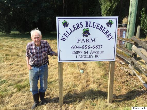 gert weller blueberry farm