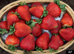 Oregon Strawberries