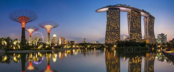 A Banyan Tree, A Bonsai & Nanotechnology : Singapore sets future agenda....