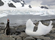 This Is How Fast Glaciers Are Actually Melting