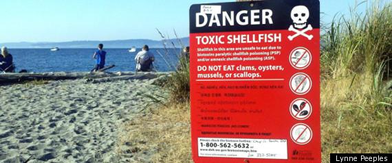 Toxic Shellfish
