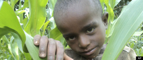 ETHIOPIA HUNGER DROUGHT