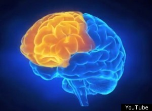 Ibm Synapse