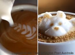 Des oeuvres d'art sur café (VIDÉO)