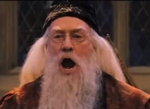 Dumbledore Saying Silence
