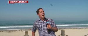 FOXS NEWS REPORTER FLYING BUG