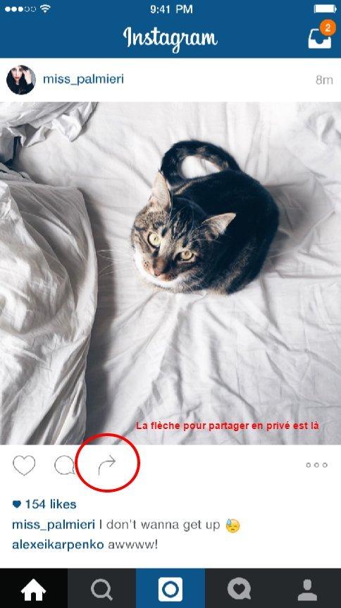 instagram fleche