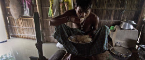 Rice India Flood