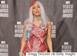 Lady Gaga's Meat Dress Is Now Utterly Minging