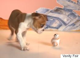 Adorable Puppies Test Out The New 'Star Wars' Toy
