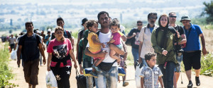 COMMENT AIDER MIGRANTS