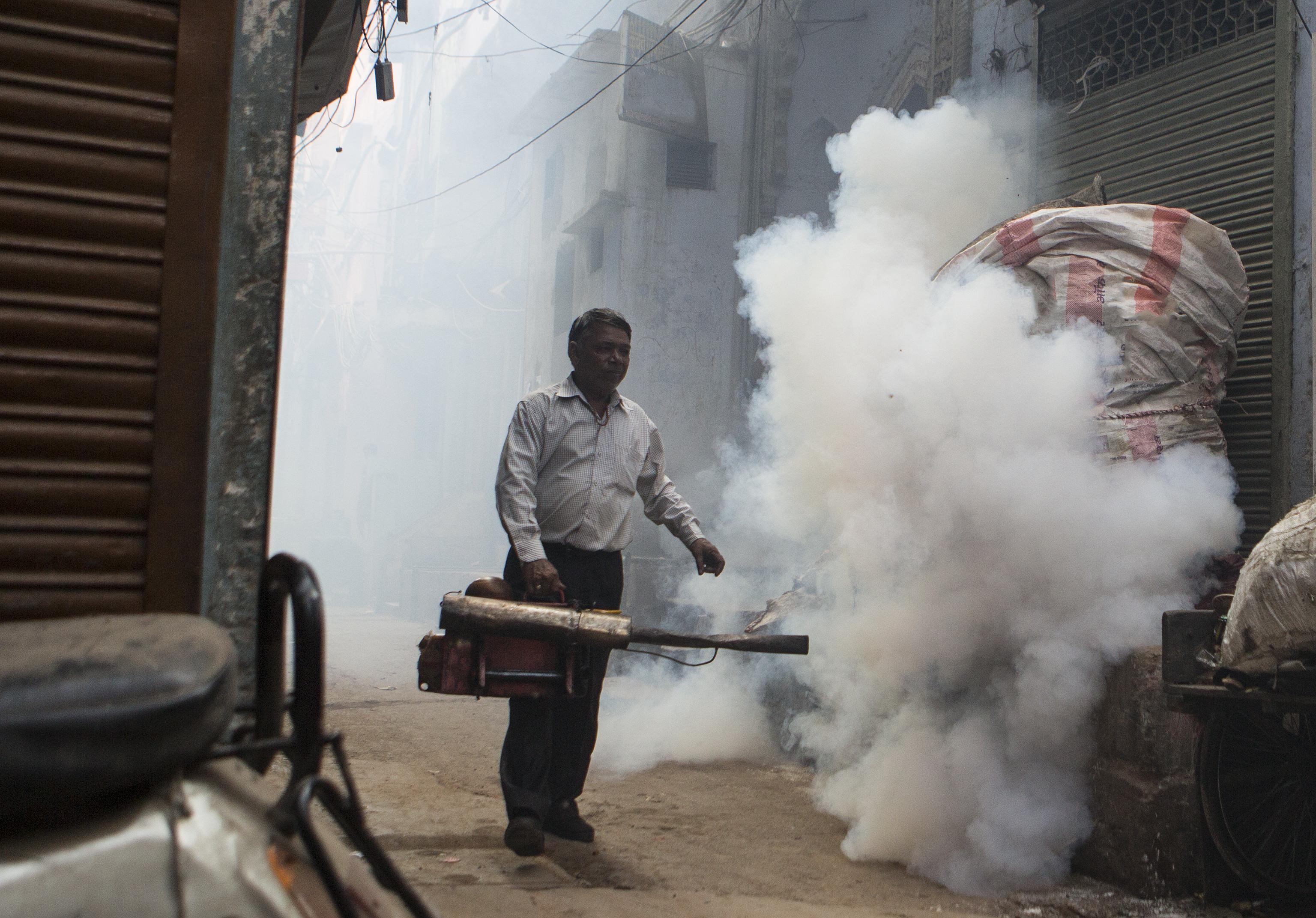 dengue india