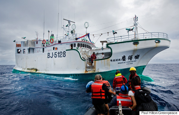 illegal tuna fishing action in the pacific ocean