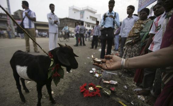 hinduism sacrifice