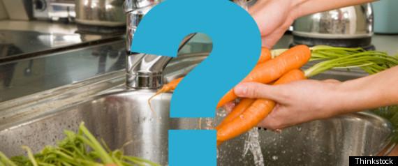 VEGAN NUTRITION MYTHS