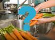 BUSTED: Top Vegan Nutrition Myths