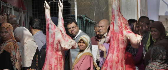 OF MEAT IN EGYPT