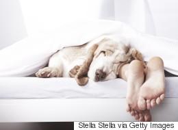 Οι 10 εντολές του καλού ύπνου