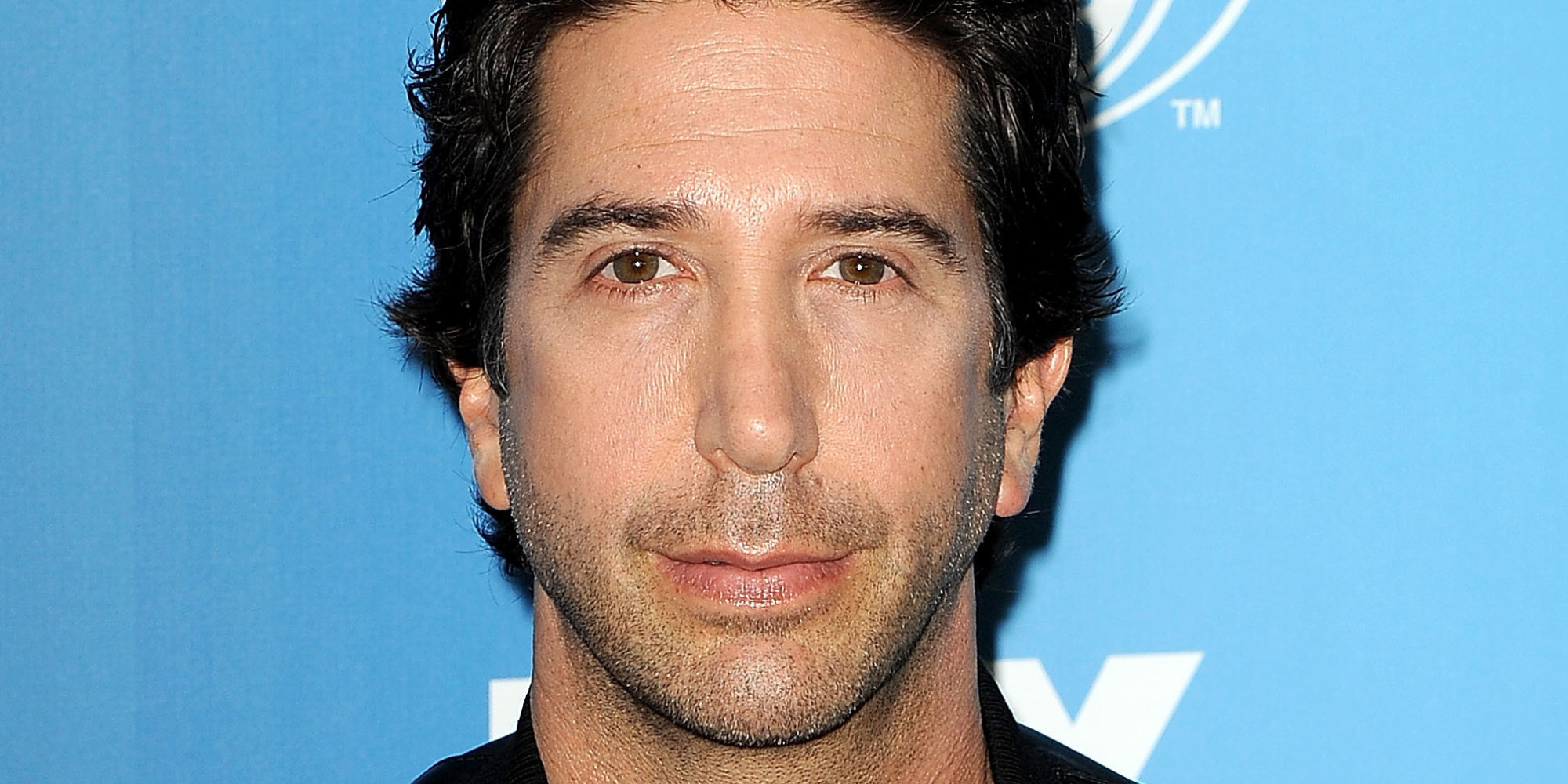 david schwimmer interview