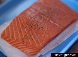 Genetically Engineered Salmon