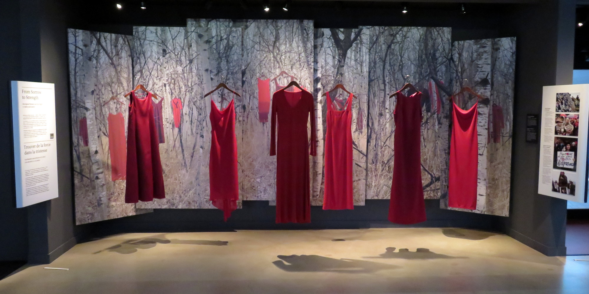 Red Dress Campaign