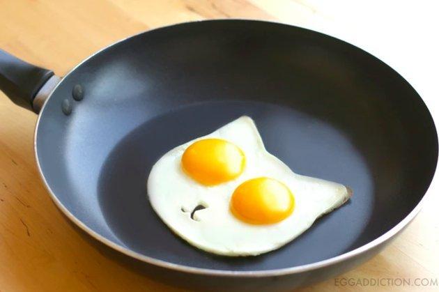 egg addiction