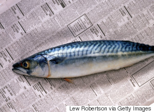 Fish Newspaper