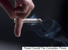 Cigarette Factory Might Be Coming To Alberta