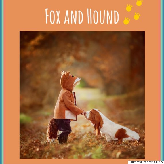 1 fox and hound