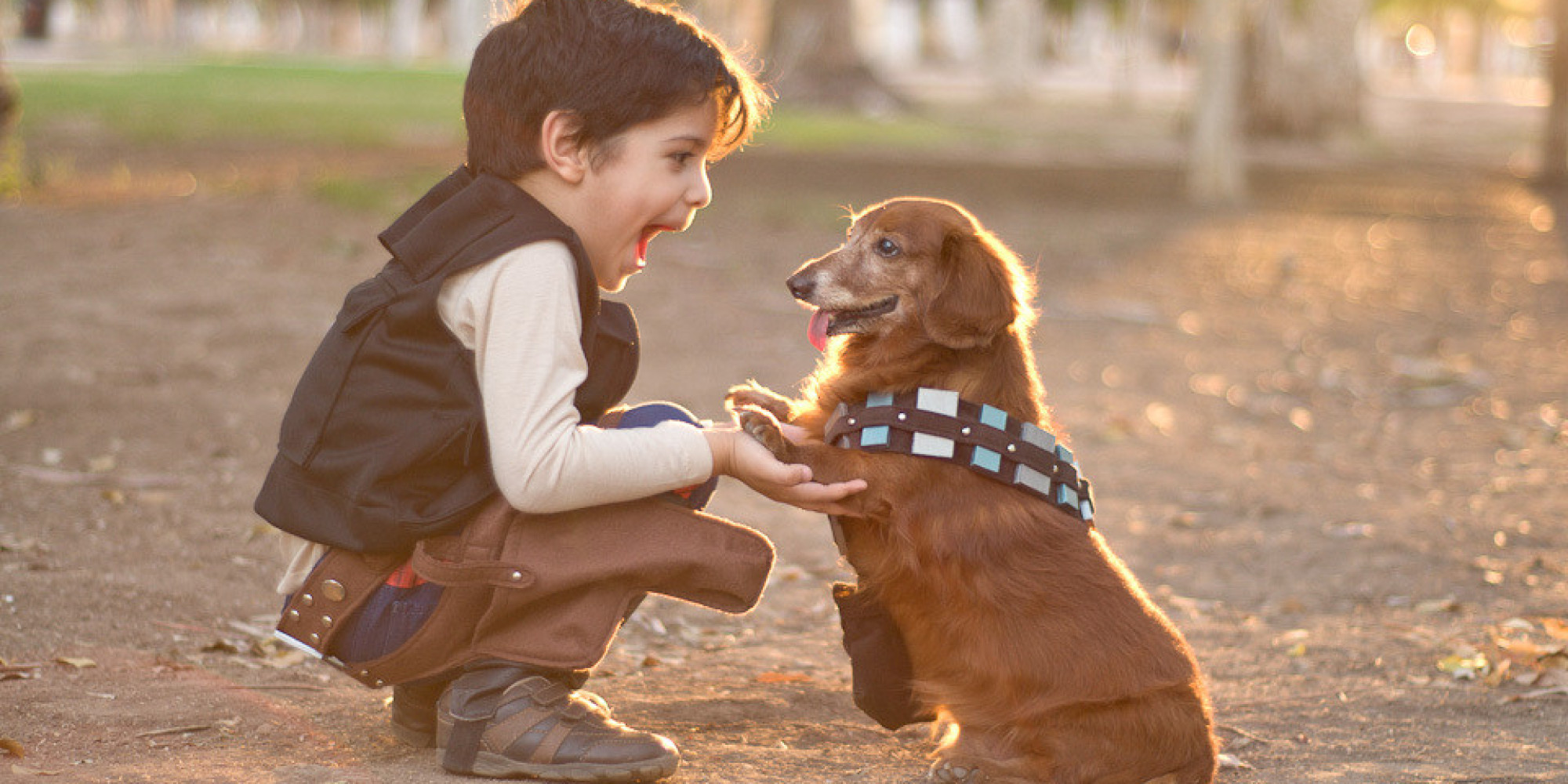 10 Adorable Halloween Costumes For Kids And Dogs That You Didn't ...