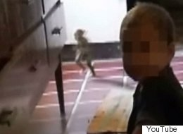 Ridiculous Video Footage Of 'Goblin' Running Past Toddler