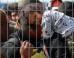 migration-crisis