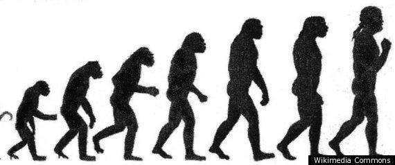 DARWIN CREATIONISM