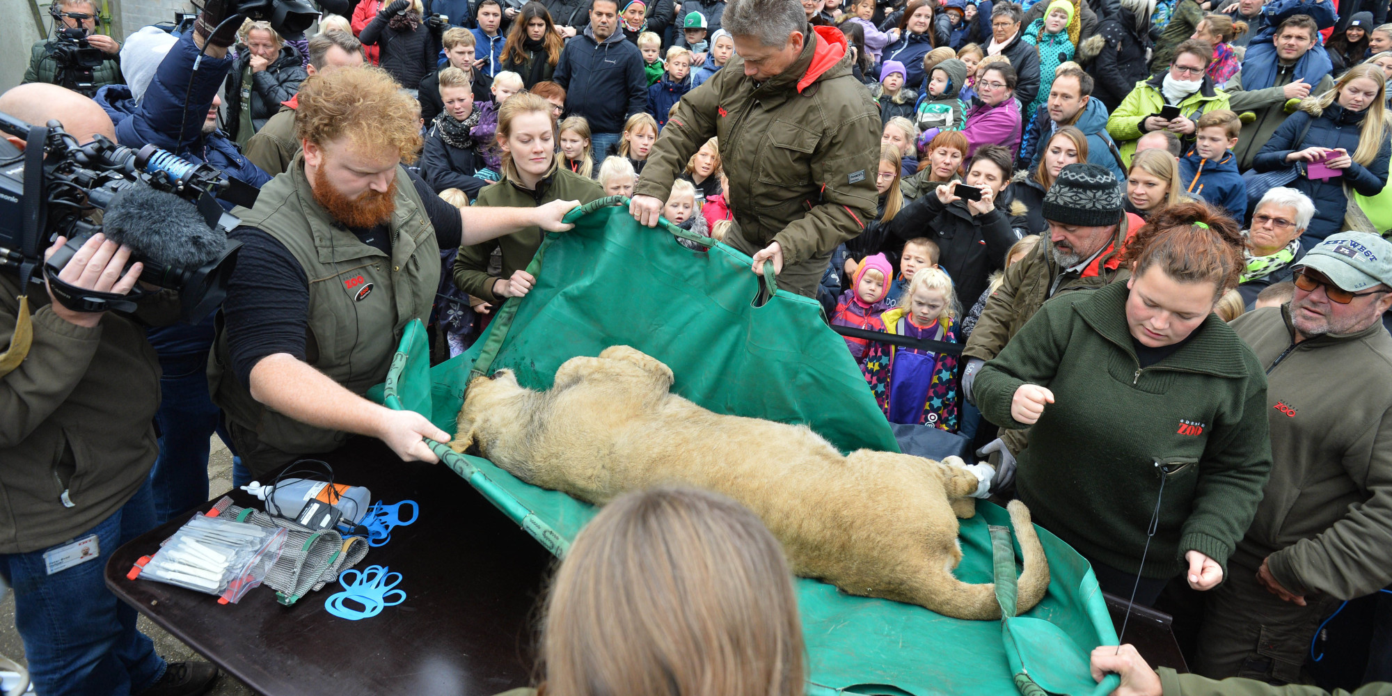 Odense Zoo sex i uk