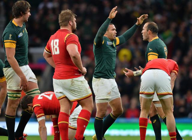 Afrique du sud pays de galles les springboks s 39 imposent - Coupe du monde rugby afrique du sud 1994 ...