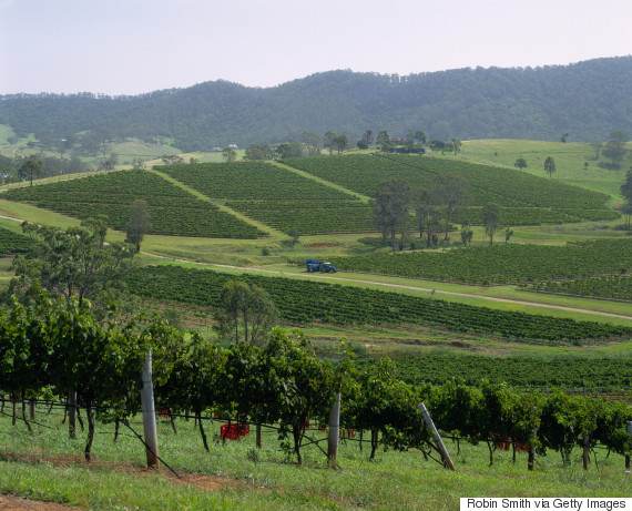 hunter valley nsw