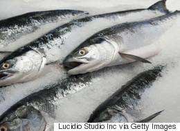 Mercury Levels Still Dangerously High in Freshwater Fish