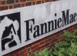 Fannie Mae CEO Mike Williams Plans To Resign: Report