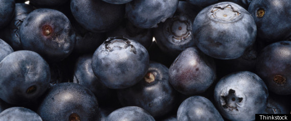 BLUEBERRY FARM WORKERS