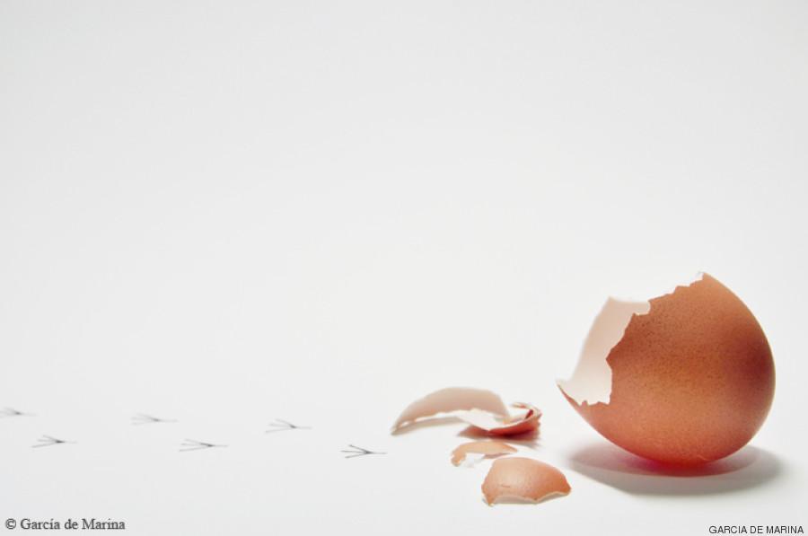huevo huellas