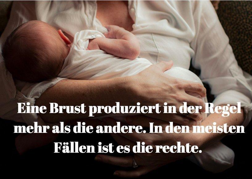 Stammzellen in der Muttermilch