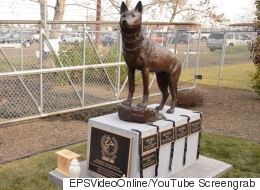 Touching Memorial Honours Edmonton Police Dogs