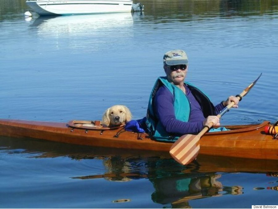 kayak dog 1