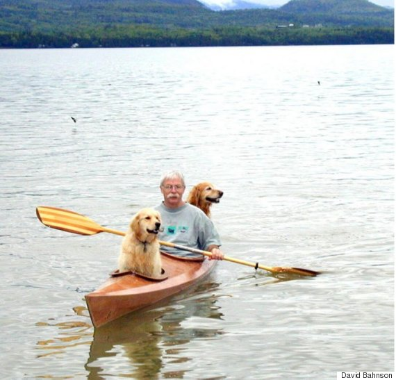 dog kayak 3