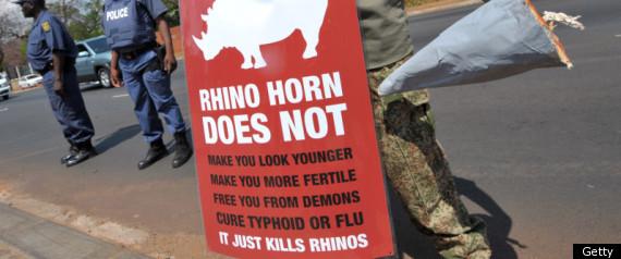 SA RHINO PROTEST