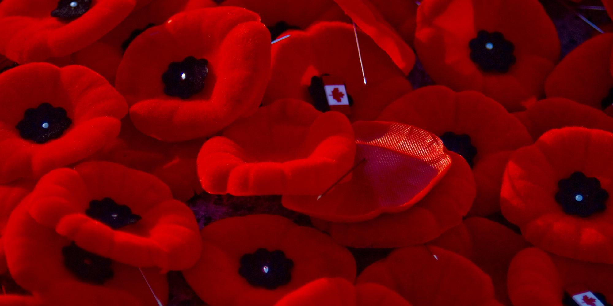Poppy protocol canadian legion patch