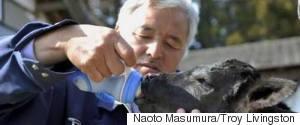 NAOTO MASUMURA