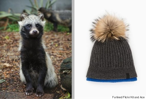 kit and ace fur toque