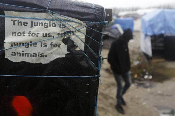 calais refugies